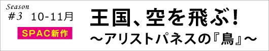 bird_banner3