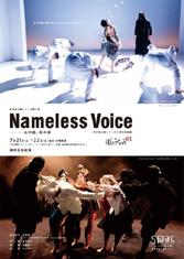 NamelessVoice11