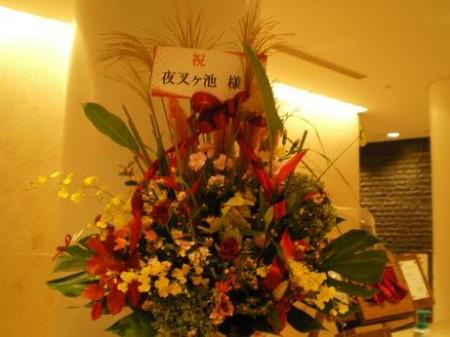 夜叉ブログ用 花