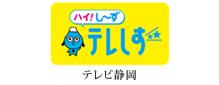 テレビ静岡ロゴ-Web用96dpi